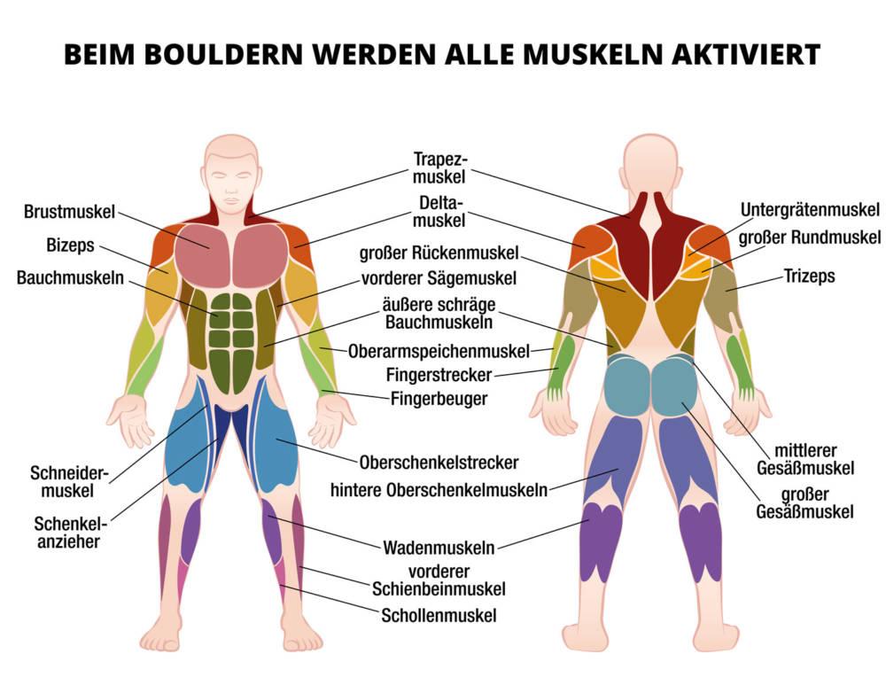 Bouldern: Trendsportart für Muskeln und Geist   FITBOOK