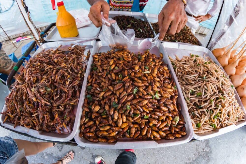 Gebackene Insekten