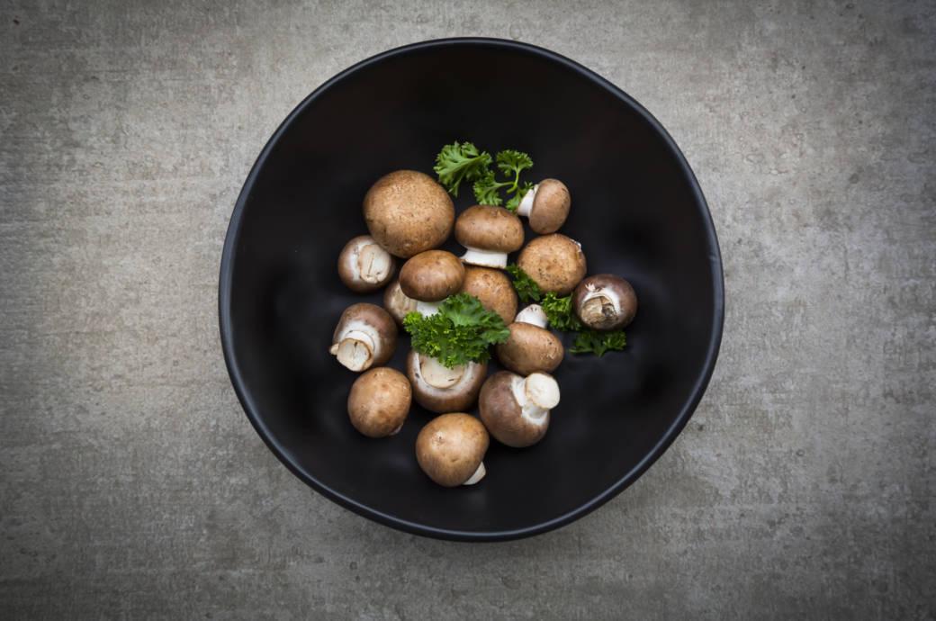 Was Pilze mit Ihrem Hirn machen
