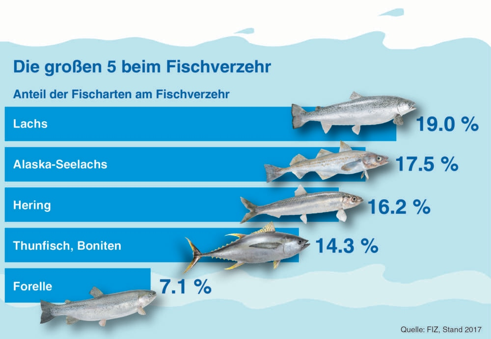 Grafik Fischkonsum in Deutschland