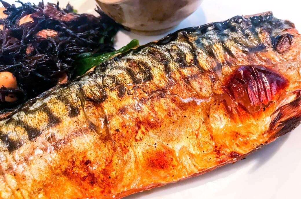 Darum zählt Makrele zu den gesündesten Fischen