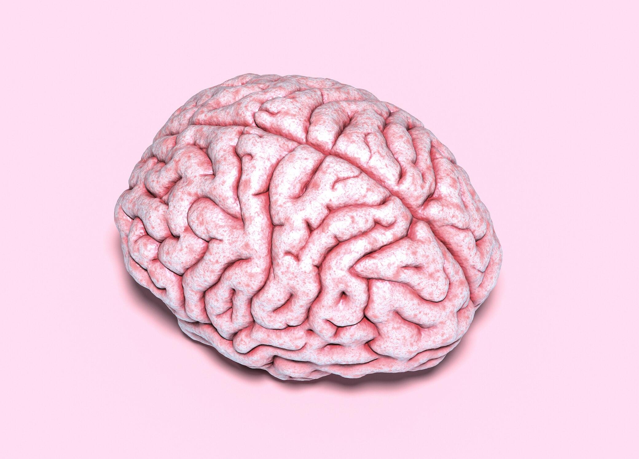 """So """"reinigt"""" sich das Gehirn im Schlaf von selbst"""