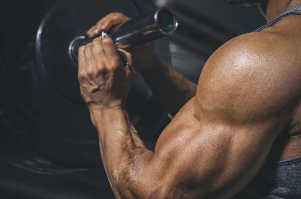 Bedeuten große Muskeln automatisch mehr Kraft?