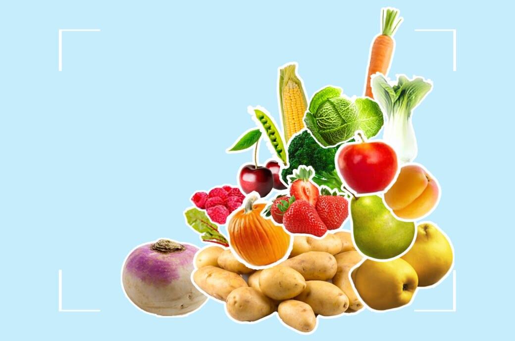 FITBOOK-Saisonkalender I regionales Obst, Gemüse und Salat