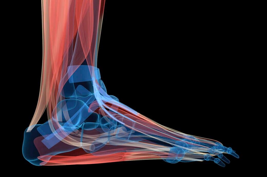 Muskeltraining gegen schwaches Fußgewölbe
