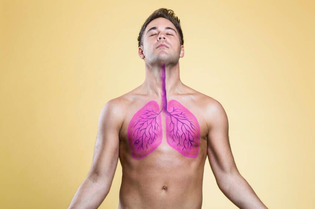 5 Lebensmittel, die gut für die Lunge sein sollen - FITBOOK
