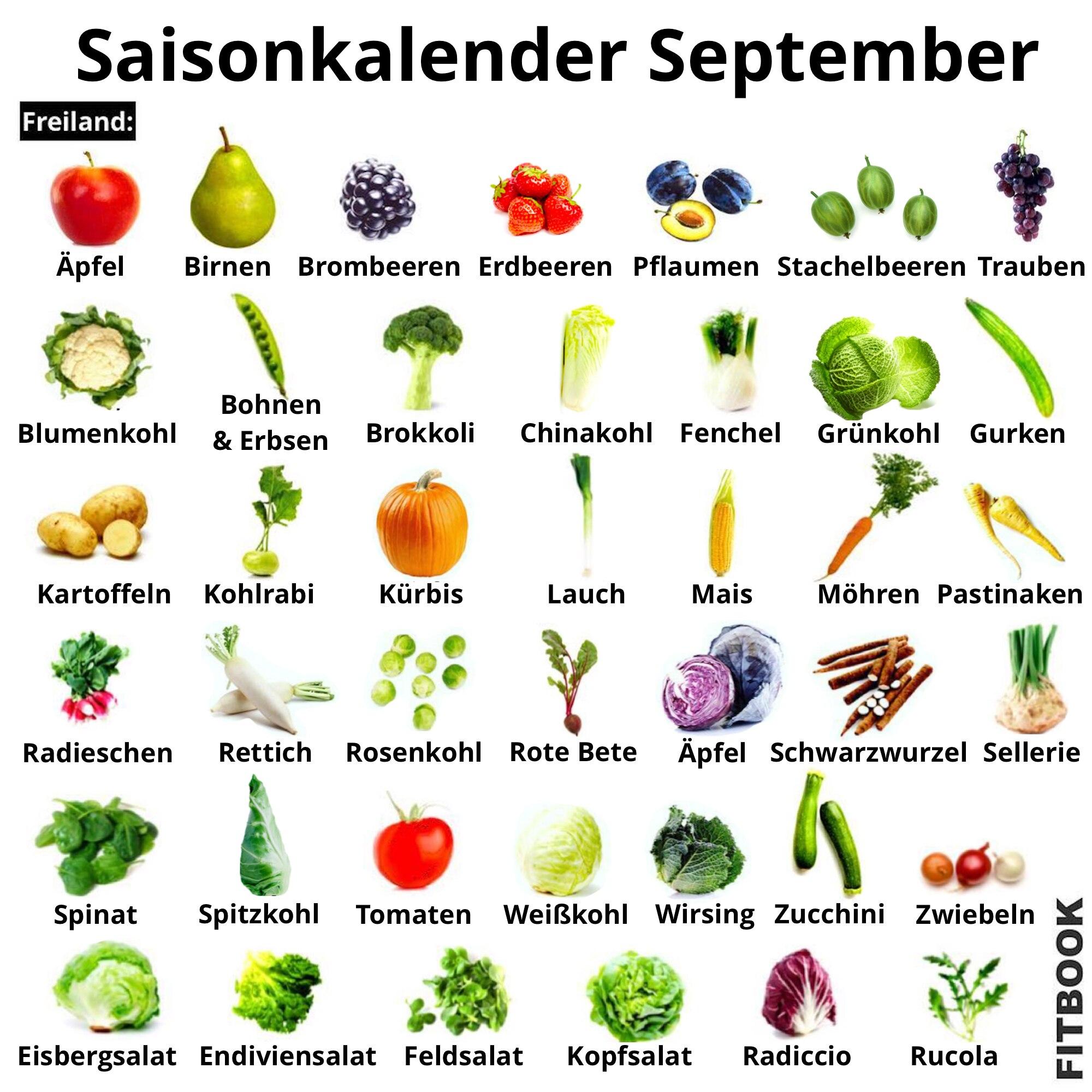 FITBOOK-Saisonkalender September