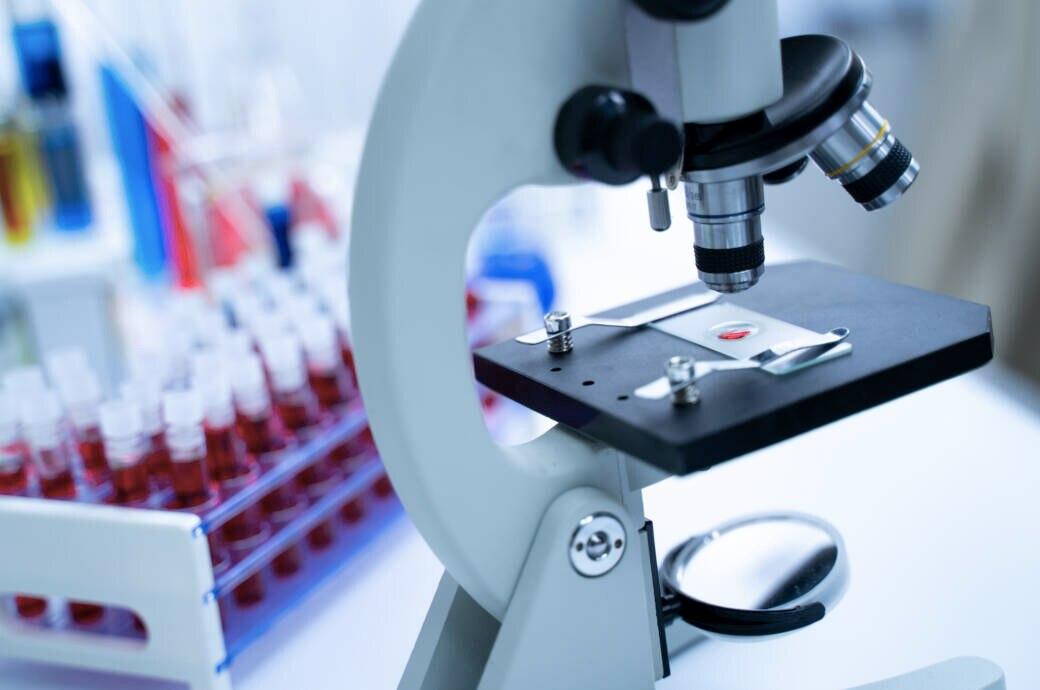 Antikörper: Unter einem Mikroskop wird eine Blutprobe untersucht