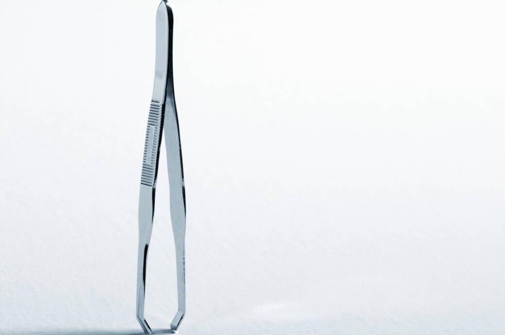 Mit einer Pinzette lassen sich Zecken gut entfernen