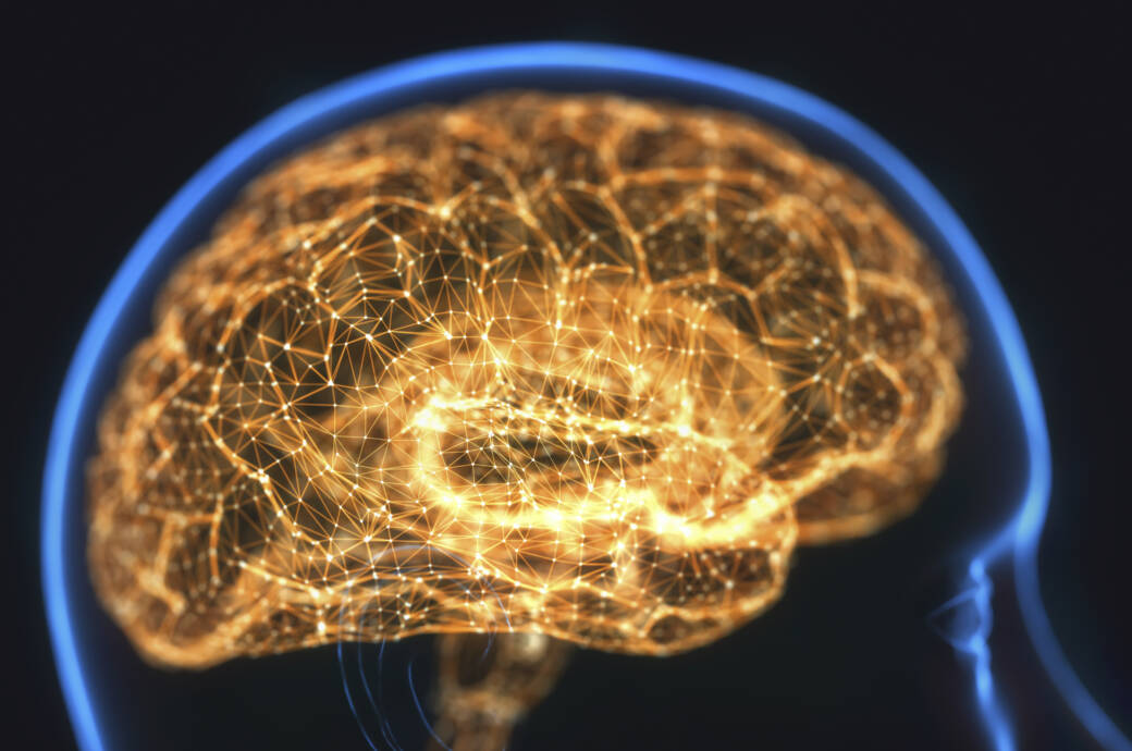 Ultraschall-Methode soll Medikamente an die richtige Stelle ins Gehirn leiten