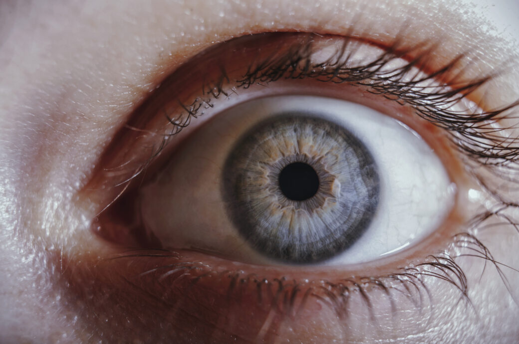 Pupillen vergrößerte Dr. Weigl
