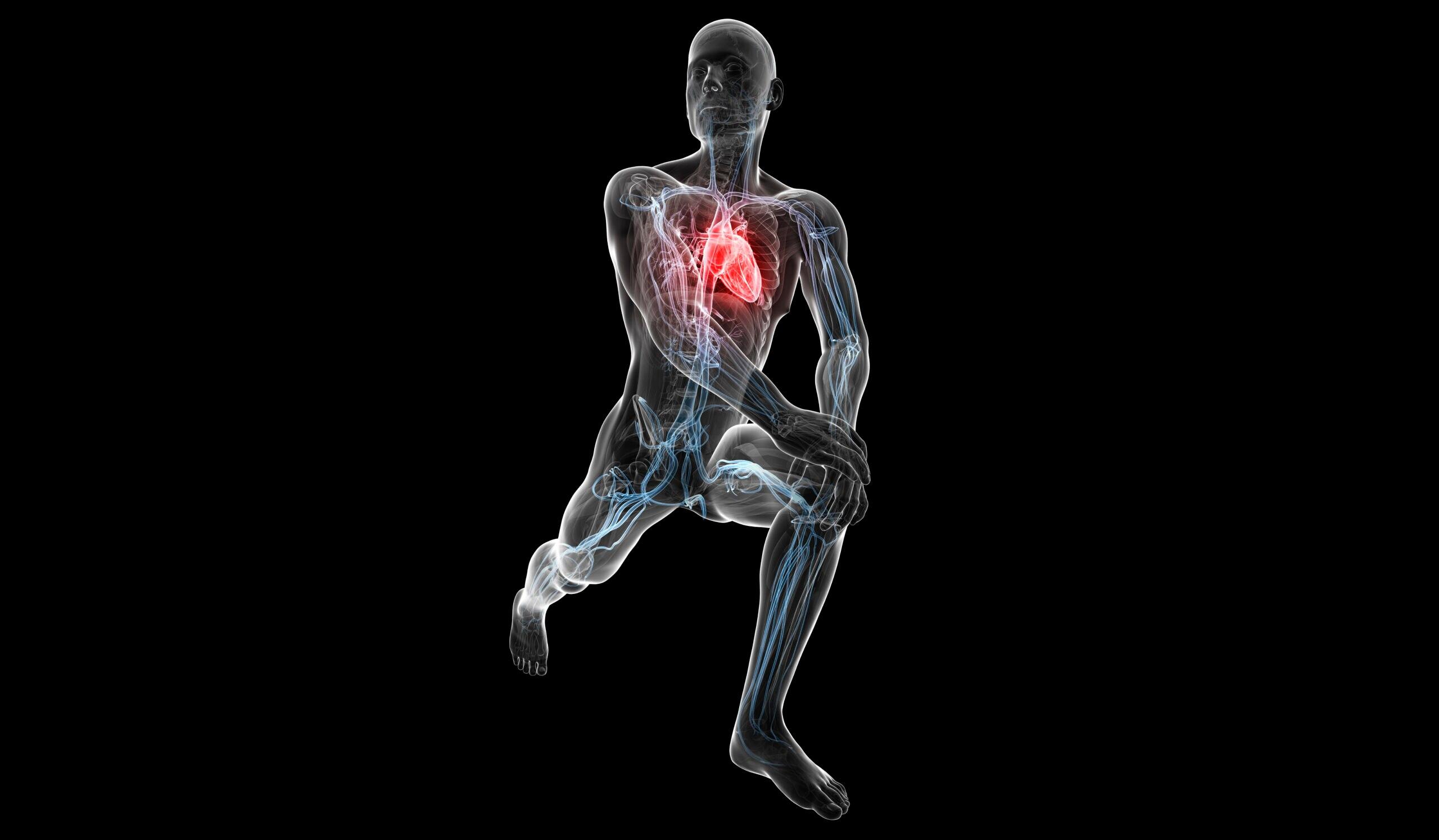 Blutdruck senken: Dehnen laut Studie effektiver als Gehen