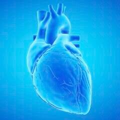 Jeder kann Herzinfarkten, Schlaganfällen und anderen potenziell lebensbedrohlichen Erkrankungen vorbeugen