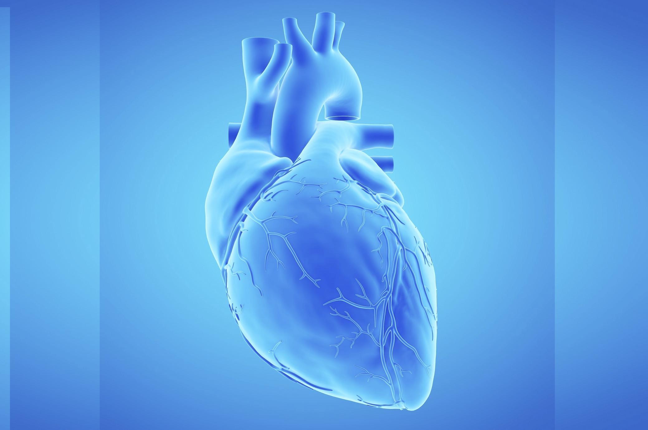 Kardiologen empfehlen 7 Schritte für ein gesundes Herz - FITBOOK